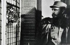Não, Fidel Castro não foi um personagem complexo, polêmico, controverso ou qualquer outro eufemismo que se escolha para absolvê-lo. Fidel era simples. Foi, tão-somente, um tirano sanguinário, o ditador mais longevo na história da América Latina.