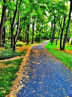 My running trail in Pittsburgh