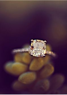 champagne diamond. This is so pretty