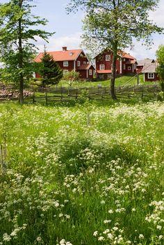 Die Region rund um die schwedische Stadt Nybro, in der Kährs seit über 150 Jahren hochwertige Parkettböden produziert, ist Teil der historischen Provinz Småland.