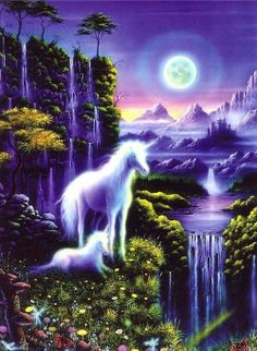 bienvenue & bonne visite 13 ♥ licorne-pegase ♥
