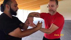 Wing Chun Snake And Crane Chi Sao flow