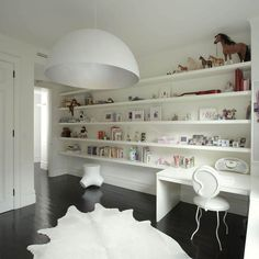 Contemporary Shelves Designs