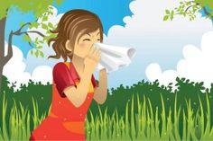 5 remèdes de grand-mère pour combattre la rhinite allergique