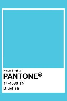 Bluefish This would be easiest to find. Not my favorite.but could find this in fabrics, etc. Azul Pantone, Paleta Pantone, Pantone Blue, Pantone Swatches, Pantone Colour Palettes, Color Swatches, Pantone Color, Flat Color Palette, Website Color Palette