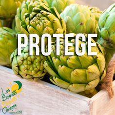 La Alcachofa ayuda a proteger tu salud cardiovascular, disminuye tus niveles de colesterol y mejora el funcionamiento de tu hígado regenerando sus células. Además te ayuda a acelerar el proceso digestivo y reducir los niveles de azúcar en la sangre.  #BisquetsObregón #LBBO #Alcachofa #Beneficios