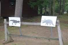 Jurassic world theme all sections, we had hunt the dinosaur! These were the targets for the archery! Cub Scouts, Jurassic World, Archery, Dinosaurs, Cubs, Adventure, Bow Arrows, Boy Scouting, Adventure Game