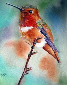 Items similar to Print of original watercolor, Hummingbird painting, bird lover, gift for mom on Etsy Watercolor Hummingbird, Hummingbird Art, Watercolor Bird, Watercolor Animals, Watercolor Paintings, Bird Painting Acrylic, Art Aquarelle, Bird Drawings, Animal Paintings