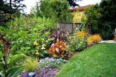 backyard hillside landscaping pictures | Hillside Back Yard - Mu Landscaping