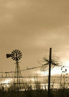 A Nebraska windmill sitting alone, silent and still. Farm Windmill, Old Windmills, Old Fences, Country Scenes, Water Tower, Old Barns, Le Moulin, The Ranch, Country Life