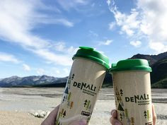 Denali Backcountry Adventure - The Beckham Project Alaska National Parks, Panning For Gold, Visit Alaska, Norwegian Cruise Line, Programming For Kids, Adventure Tours, Disney Cruise Line, Group Tours, Royal Caribbean