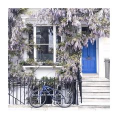Wake up and smell the wisteria. by anthropologie London, Wisteria, Outdoor Spaces, Places To Travel, Living Spaces, Anthropologie, Like4like, Sweet Home, Entryway