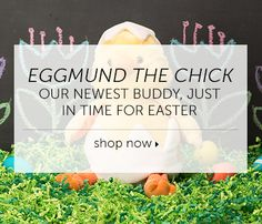 Arriving just in time for spring! Order Eggmund while supplies last by clicking on this photo <3
