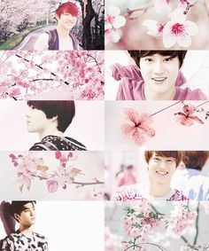 Month edit - April - EXO/Suho