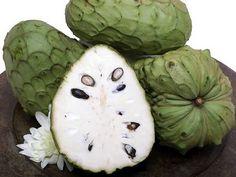 Anona Nicaraguan Exotic Fruit