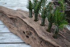 Driftwood Vase_Large with 5 test tube vases
