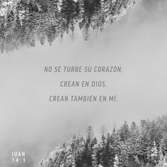 No se turbe vuestro corazón; creéis en Dios, creed también en mí. S.Juan 14:1 RVR1960