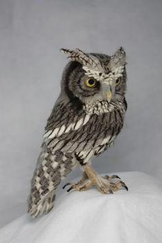 Felt Owls, Felt Birds, Felt Animals, Felt Diy, Felt Crafts, Western Screech Owl, Needle Felted Owl, 3d Figures, Needle Felting Tutorials