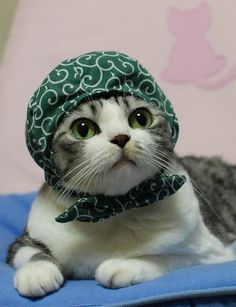 My cap matches my eyes!
