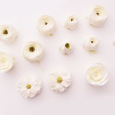 깔끔깔끔  #flowercake#buttercream#julietrose#rose#buttercreamcake#wilton#am1122cake#piping#handmade#specialcake#ranunculus#butter#flower#cake#wedding#버터크림#플라워케이크#꽃케이크#수제케이크#플라워케익#파이핑#수제케이크#주문케이크#천호동#파이핑#버터케이크#가을#생신케이크#감성  www.am1122cake.com pandasm1122@naver.com✔️ Buttercream Flower Cake, Flower Cupcakes, Buttercream Frosting, Korea Cake, Spring Cake, Floral Cake, Sugar Flowers, Beautiful Cakes, How To Make Cake