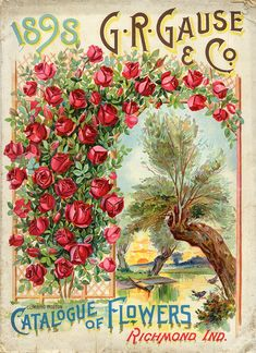 Vintage 1898 Seed Catalog cover  from the  Smithsonian Institution Library