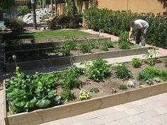 Step-by-step raised gardens