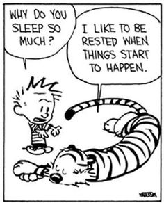 Calvin+And+Hobbes+Quotes+:+theBERRY