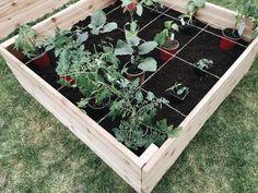 Le potager en carrés (square foot garden) - Article de magazine - Trois fois par jour
