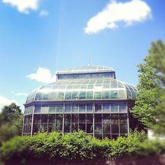 Jordan Hall Greenhouse