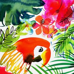 Margaret Berg Art: Jungle Tropics Parrot