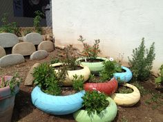 """Julie, principal at Beit HaYeladim Preschool in Santa Barbara, CA, tells us they have an active composting and vermiculture program.  """"They have harvested the worm tea and used it to fertilize the garden.  They are learning about how we feed the worms, the worms feed the plants, and the plants feed us.""""  #gettingstarted"""