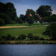 Ved Sandager Næs #visitdenmark #visitfyn #nature #nature_perfection #naturelovers #mothernature #natur #denmark #danmark #dänemark #landscape #assensnatur #assens #mitassens #vildmedfyn #fynerfin #vielskernaturen #visitassens #instapic #picoftheday #nofilter #summer2016 #sommer #igdenmark