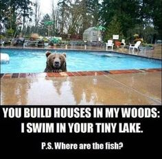 Good point Bear, good point... uhmm, just stay right there... Honey, where are the fish sticks?
