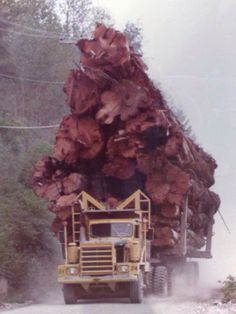 Off Road Hayes Truck with a load of Western Red Cedar, near Port McNeill, Vancouver Island, BC.- slightly overloaded lol Logging Equipment, Heavy Equipment, Cool Trucks, Big Trucks, Pickup Trucks, Truck Drivers, Van 4x4, Heavy Machinery, Heavy Truck