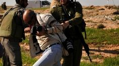 Journalists Targeted with Teargas by Israeli Soldiers