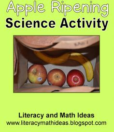 S.T.E.M. In the Classroom: Fun Science Experiment~Do apples cause foods near them to rot quickly?