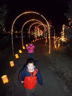 Traveling Kids On The Go: Christmas Light Extravaganza