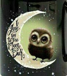 Art Drawings Owls 🦉 I love you to the Moon and Back Owl Owl Bird, Pet Birds, Owl Always Love You, I Love You To The Moon And Back, Owl Pictures, Pics Art, Beautiful Owl, Baby Groot, Wise Owl