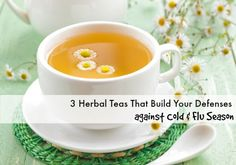 3 Herbal Teas That Build Your Defenses Against Cold And Flu Season {KeeperoftheHome.org}