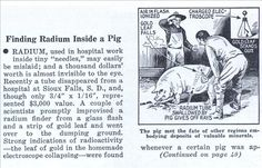 Finding Radium Inside a Pig (Jan, 1936)