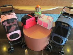 It's almost time for summer vacations! Whether you're driving to the beach or flying to Hawaii, Fido Park Avenue has the cutest options for doggy traveling!