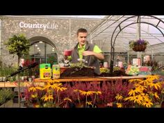 Fergal's back with more helpful tips for your garden. In this video Fergal shows us how to plant a winter/spring window box.