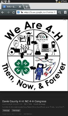 4-H Flag 3x5 ft 4H Club Organisation State /& County Fair Education Projects Farm