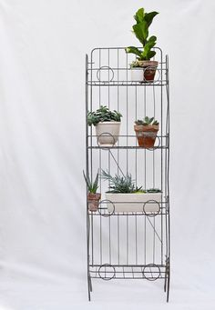 vintage potato chip rack turned plant rack.