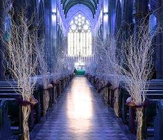 white branches and blue uplighting
