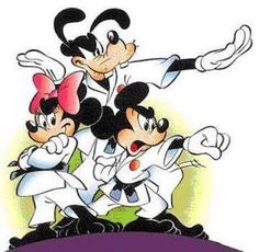 Mickey, Minnie & Goofy ready for some karate action.