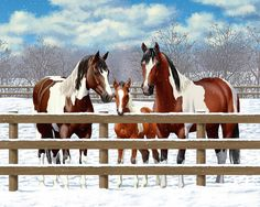 Horses Print featuring the painting Bay Paint Horses In Snow by Crista Forest