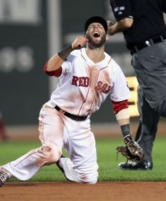 """Dustin Pedroia: Look up the definition of """"dirt dog"""" in the dictionary and you will see this."""