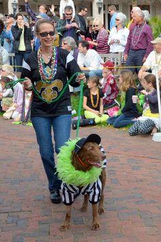 Sandestin Mardi Gras Dog Parade | The Village of Baytowne Wharf | Sandestin Golf & Beach Resort | Miramar Beach, Florida