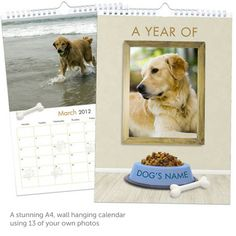 Personalised calendar for your pooch!